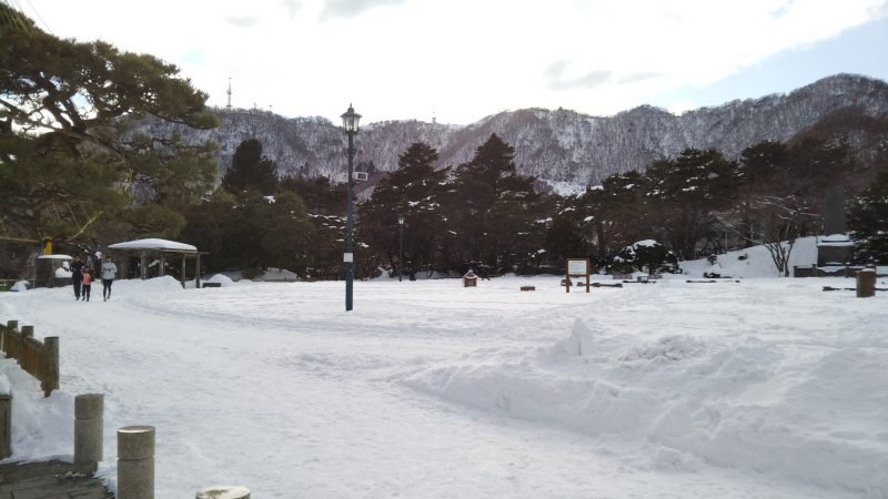 函館公園 ランニング