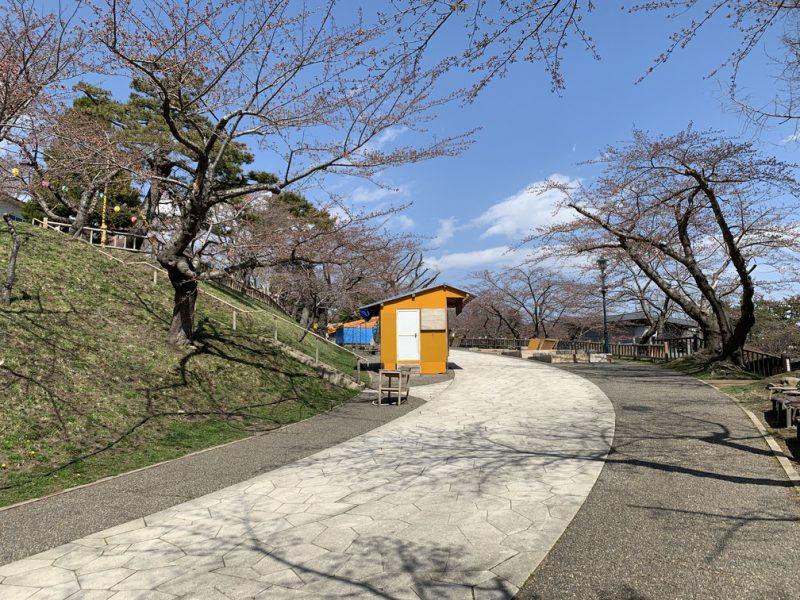 函館公園 桜 屋台 出店